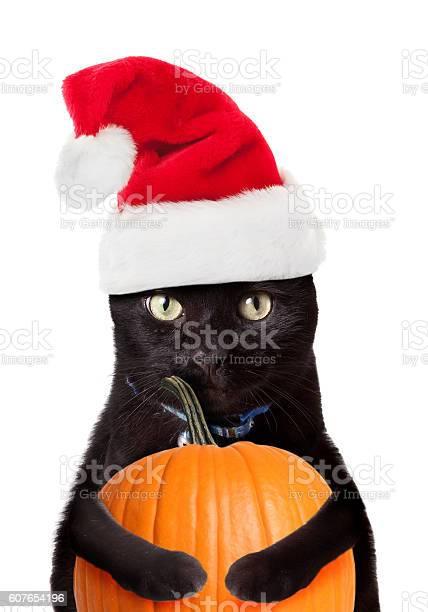 Merry halloween picture id607654196?b=1&k=6&m=607654196&s=612x612&h=ie4hl23evvwv4ftzvhgmofgex wbxmrvrxpmooe o0o=