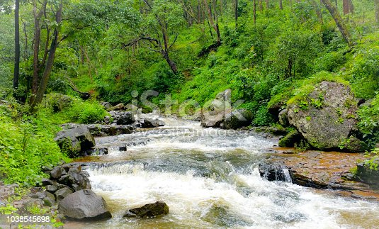 Beautiful narmada river flows through deep forest in India.