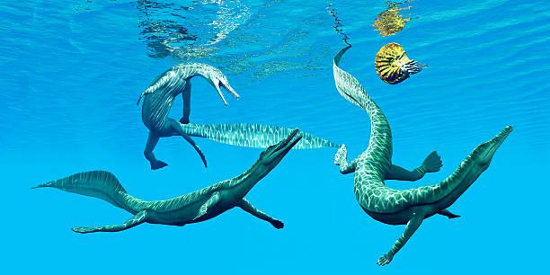 Mesosaurus Marine Reptiles – Foto
