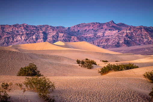 Windswept landscape of Mesquite Flat Dunes, Death Valley National Park, at sunset with a clear sky.
