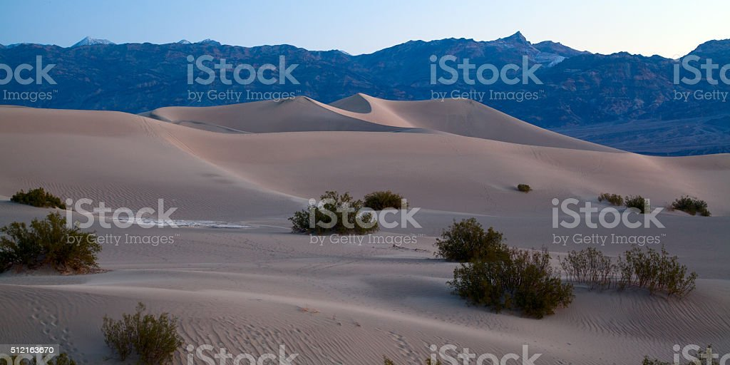 Mesquite Flat Dunes royalty free stockfoto