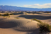 Death Valley National Park, California - November 2015 - The Mesquite Flat Sand Dunes are located just outside Stovepipe Wells Village on CA-190 in Death Valley, California 92328 about 30 minutes west of Furnace Creek.