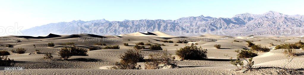 Mesquite Flat Sand Dunes royaltyfri bildbanksbilder
