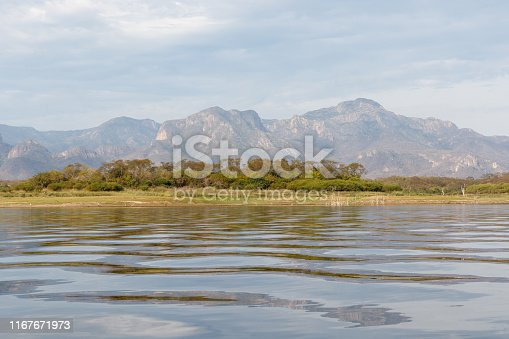 Mesquite trees sticking up out of the surface of the calm water of Lake El Salto, a famous freshwater bass fishing spot in Sinaloa, Mexico, with the Sierra Madre Mountains in the background