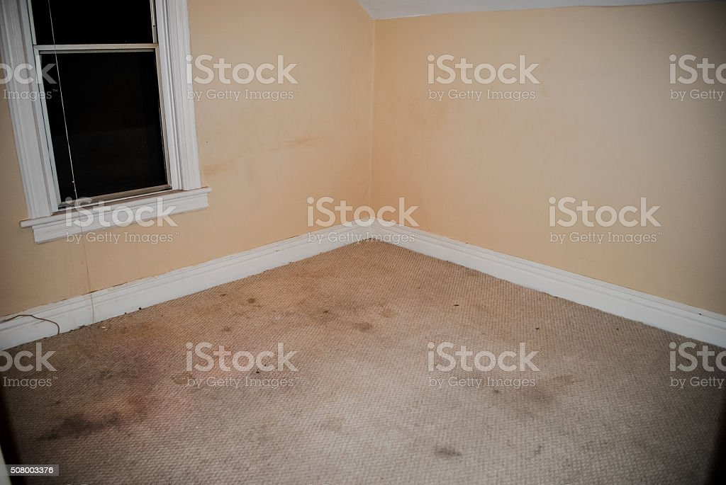 A messy ruined stained carpet in a modern house