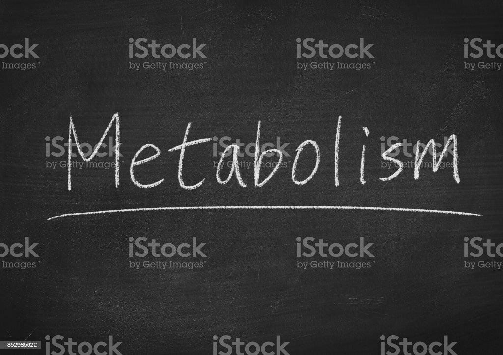 metabolism stock photo