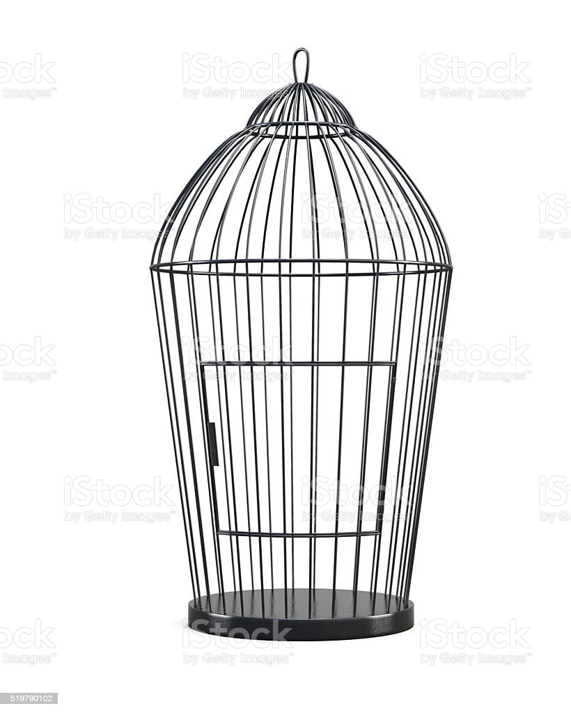 Metal bird cage isolated on white background. Front view. stock photo