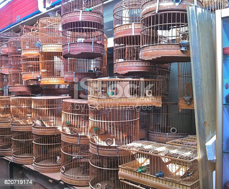 Rows of bronzed metal birdcages hang for sale in a bird and flower market in Shanghai, China.
