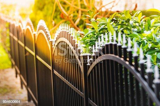 Black iron fence and sunlight