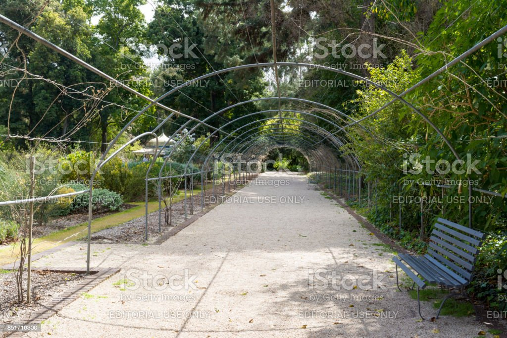 Metal Framed Arbor, Adelaide Botanic Garden stock photo