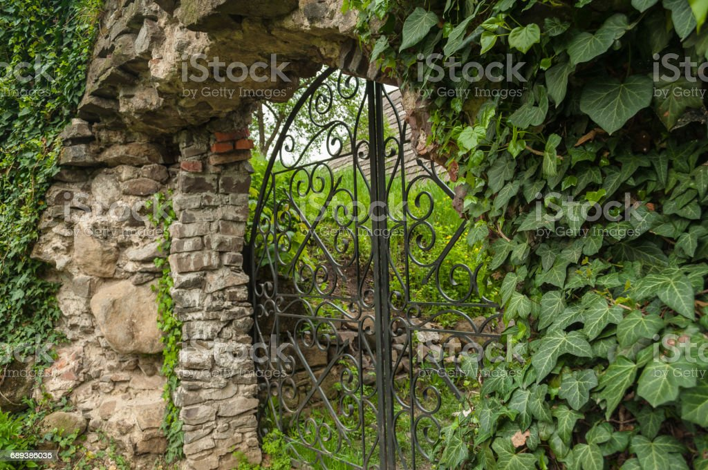 Metal gate in the greenery stock photo
