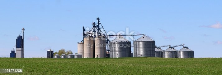 Group of farm feed and seed storage bins with fresh seeding of alfalfa
