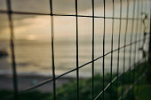 metal mesh fence. sea at sunset behind the net. restraint of liberty