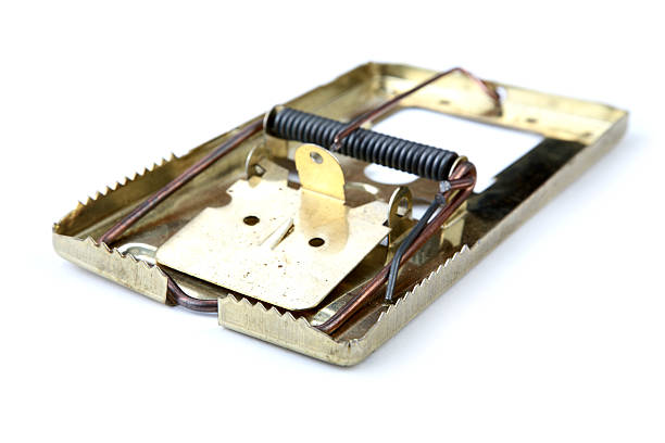 Metal mousetrap  ensnare stock pictures, royalty-free photos & images
