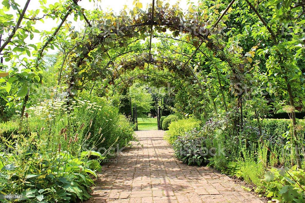 Metal pergola arch, espalier apple trees, grape vines, brick pathway  royalty-free - Metal Pergola Arch Espalier Apple Trees Grape Vines Brick Pathway