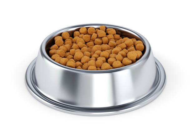 Metal pet bowl with dog food picture id963458580?b=1&k=6&m=963458580&s=612x612&w=0&h=t58bflyackjdbj7izmspecnmiwrbbmoi9lewtjoadqg=