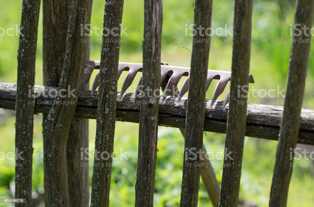 Metal rake lying on the mossy wooden fence stock photo
