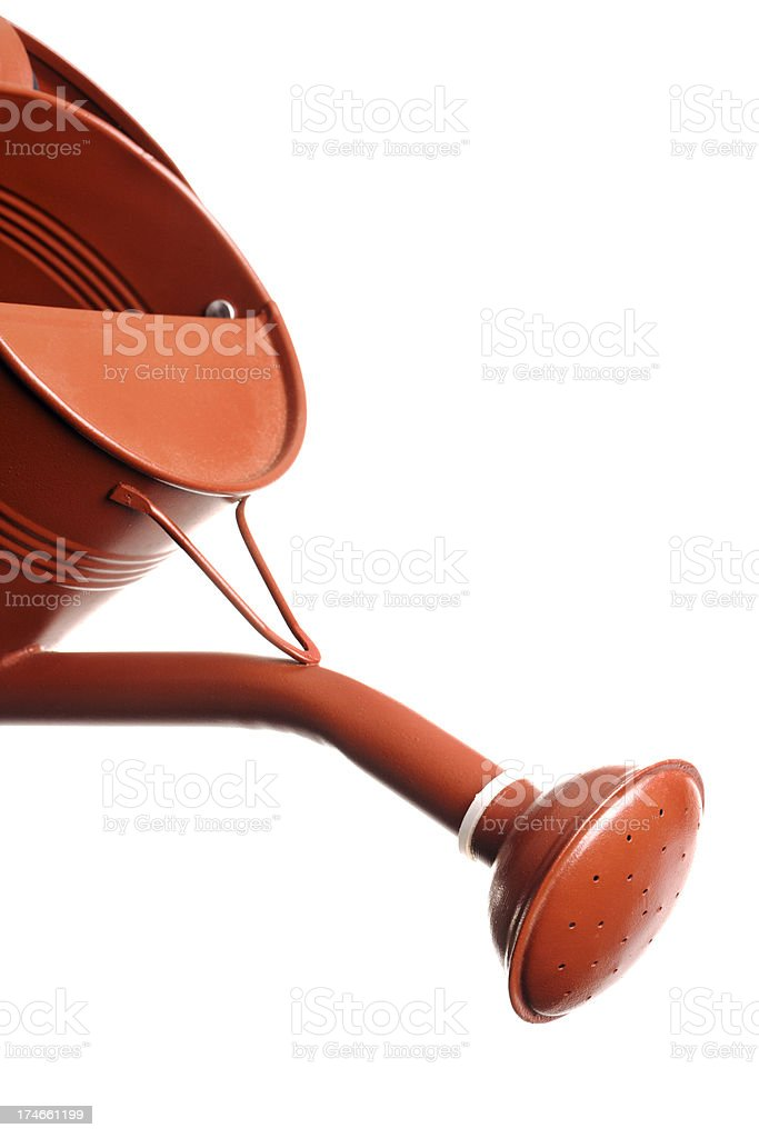 Metal Watering Can Close-up Vt royalty-free stock photo