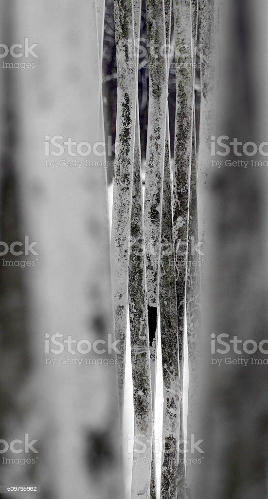 Metalldetail – Foto