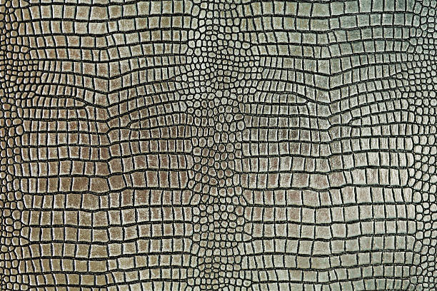 Metallic crocodile skin shape texture background stock photo