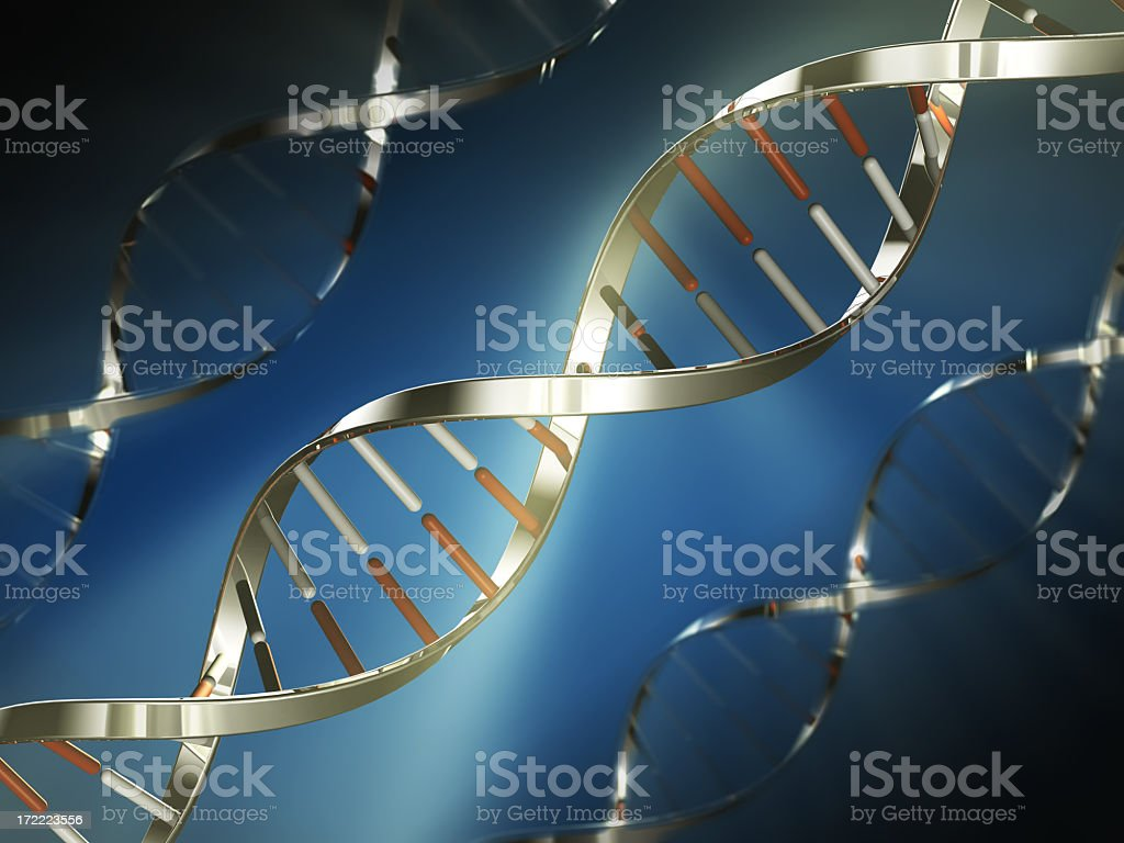 Metallic DNA strand model image royalty-free stock photo
