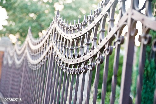 istock Metallic Gate Barrier With Patterns 1007302718
