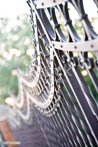 istock Metallic Gate Barrier With Patterns 1007303968