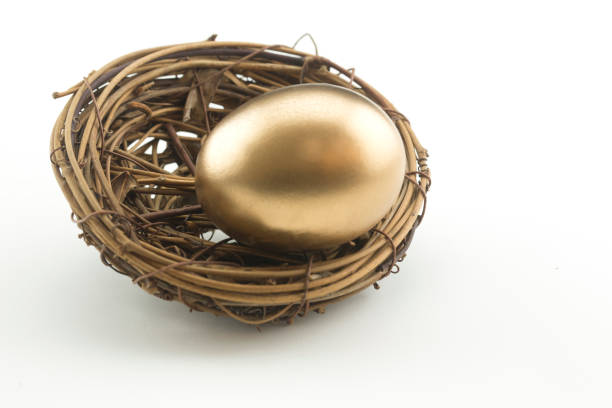 metaphoric, single gold nest egg with copy space on right - financial planning stock pictures, royalty-free photos & images