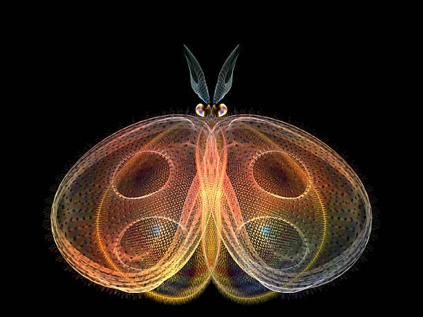 Metaphorical butterfly picture id469116443?b=1&k=6&m=469116443&s=612x612&w=0&h=zlqrsyi beynzvfrnxcxm5jljivwbb9i5tsqemqd47i=