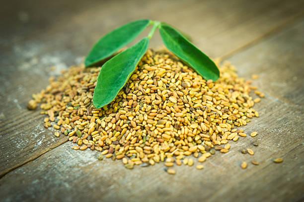 methi graines et leaf - fenugrec photos et images de collection