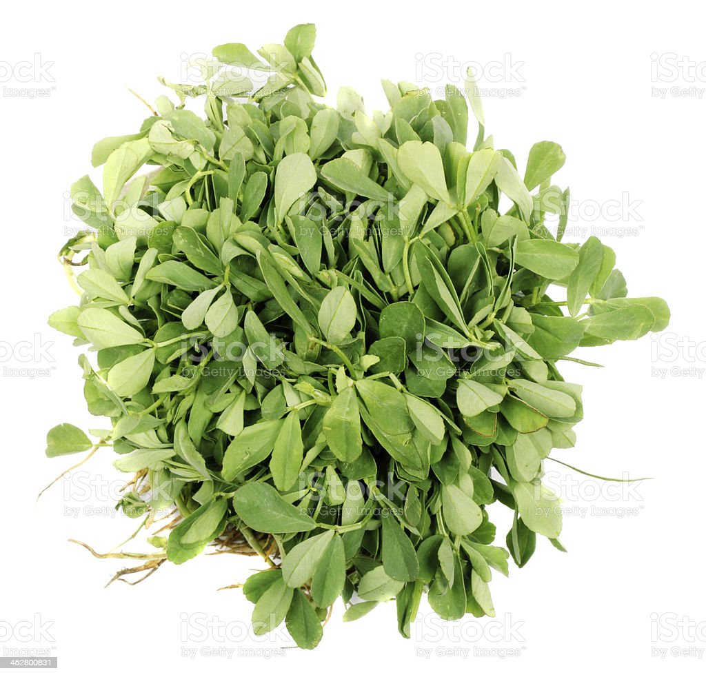 Methi vegetable stock photo