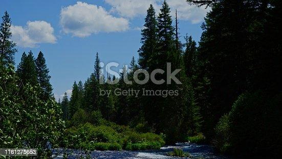 Central Oregon's Cascade Range. Deschutes National Forest. Upper Metolius River.