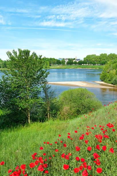 Meung sur Loire village and Loire river bank - Photo