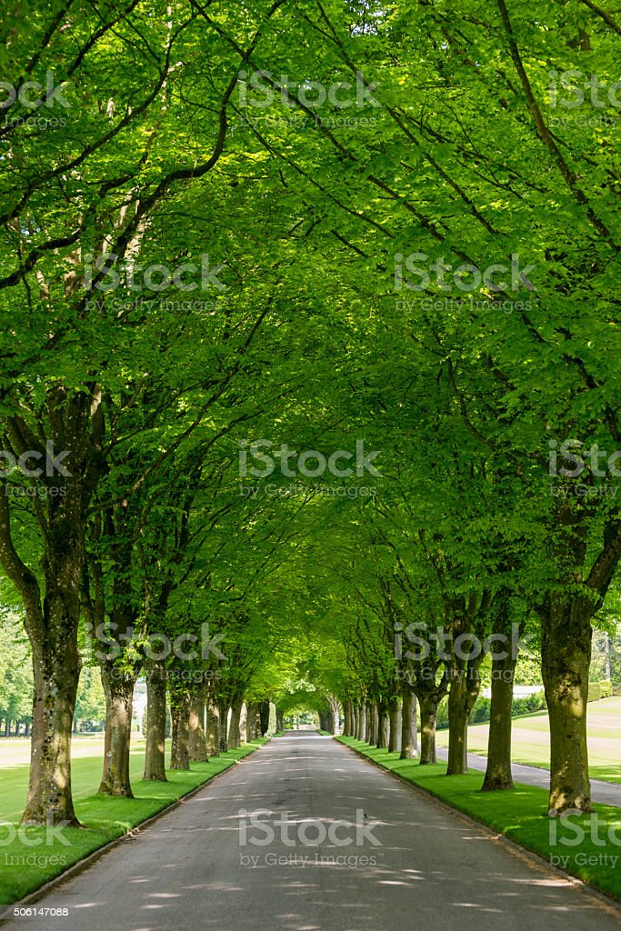 Meuse-Argonne American Cemetery in France stock photo