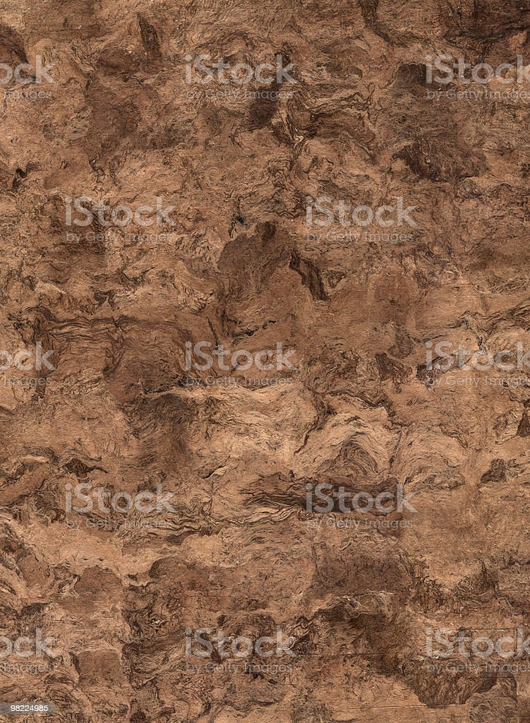 Mexican Bark Paper XL royalty-free stock photo