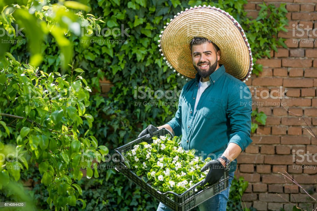 Mexican Botanist Stock Photo & More Pictures of Adult | iStock