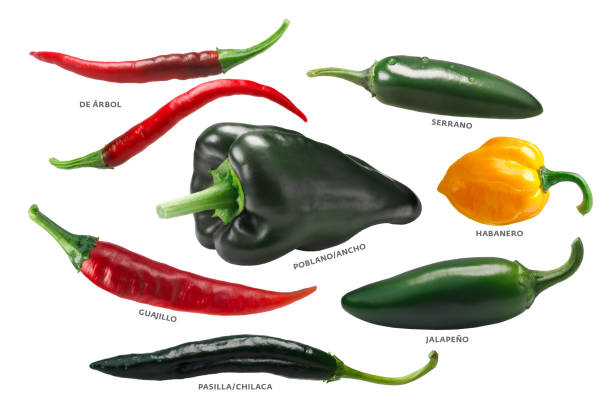 mexican chile peppers, paths - green chilli pepper stock photos and pictures