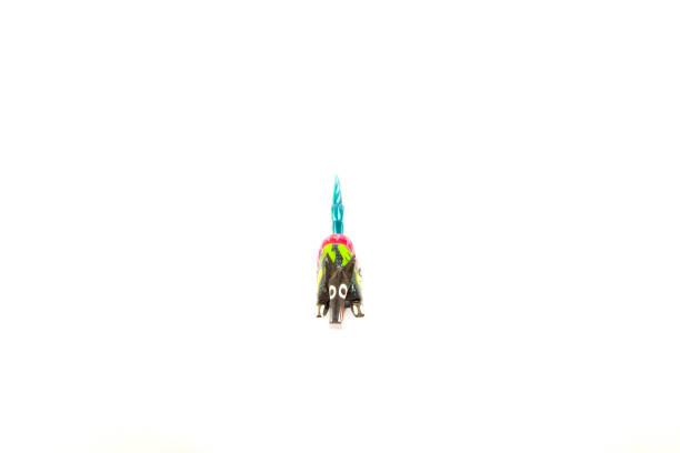 Mexican colorful souvernir (Alebrije) with white background - foto de stock