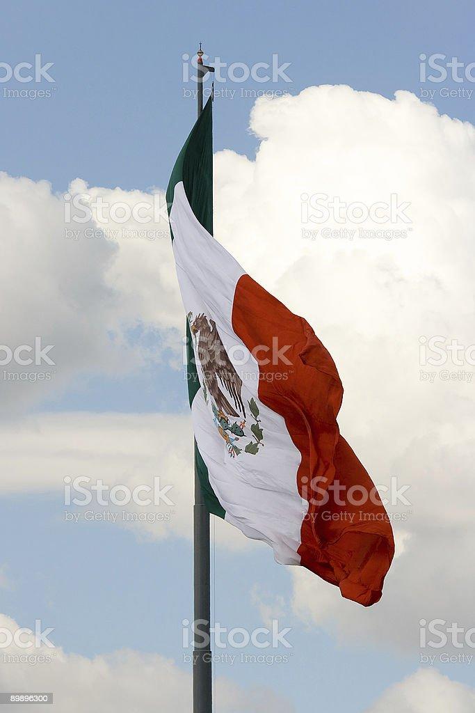 Мексиканский флаг 5 Стоковые фото Стоковая фотография