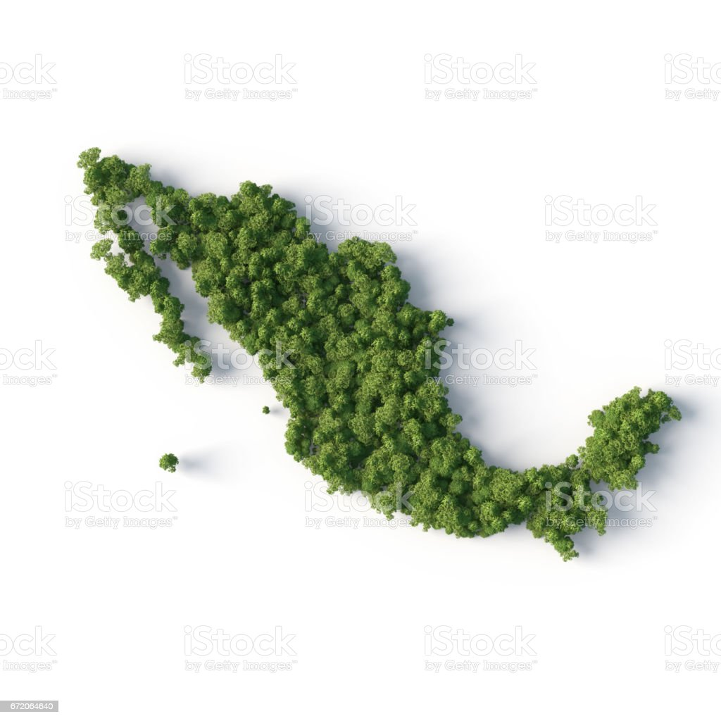 mexico forest shape stock photo