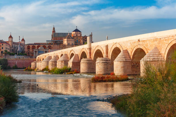 Mezquita and Roman bridge in Cordoba, Spain Great Mosque Mezquita - Catedral de Cordoba and Roman bridge across Guadalquivir river in the morning, Cordoba, Andalusia, Spain cordoba spain stock pictures, royalty-free photos & images