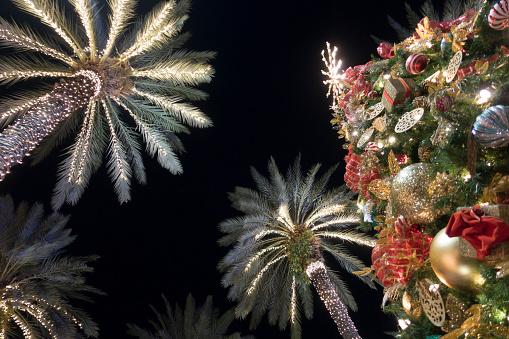 Miami Beach Christmas Tree Decorations With Palm Trees