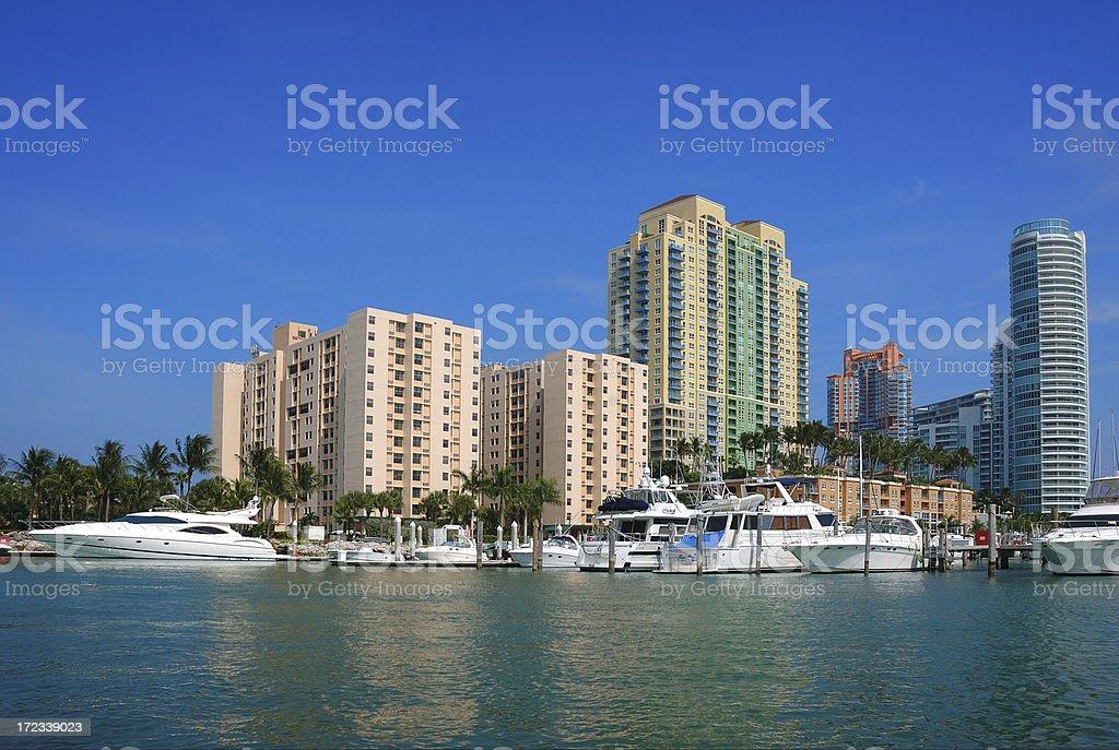 miami beach marina and luxury condos royalty-free stock photo