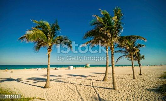 miami beach afternoon scene