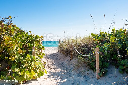 This is a color photograph of a Miami Beach path through the sand dunes leading to the beach on a sunny winter day.