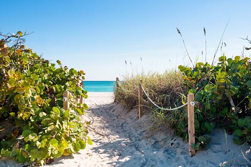 Miami Beach Pathway through Sand Dunes