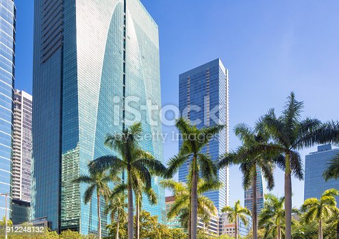 Miami Brickell financial district Office buildings with palm tree tops and copy space in the blue clear sky.