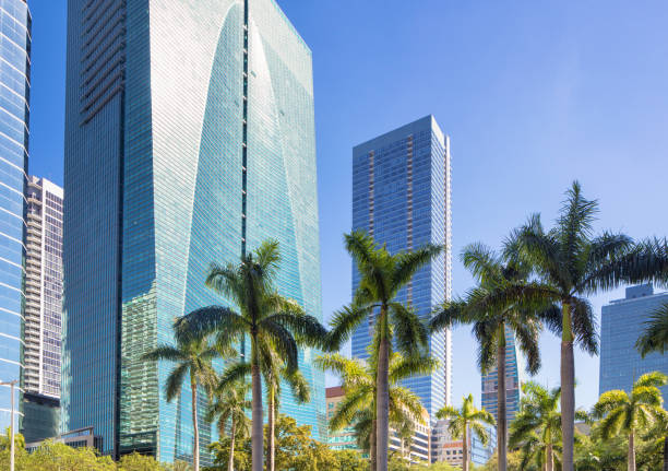 Miami Brickell financial district Office buildings with palm tree tops stock photo