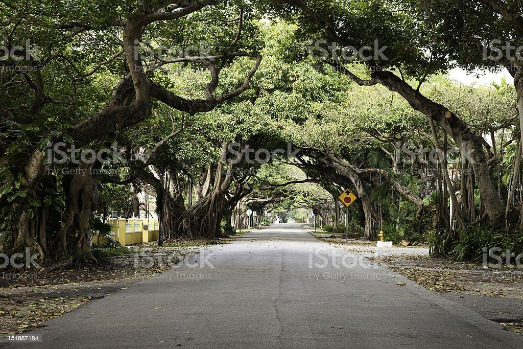 Miami Coral Gables street stock photo