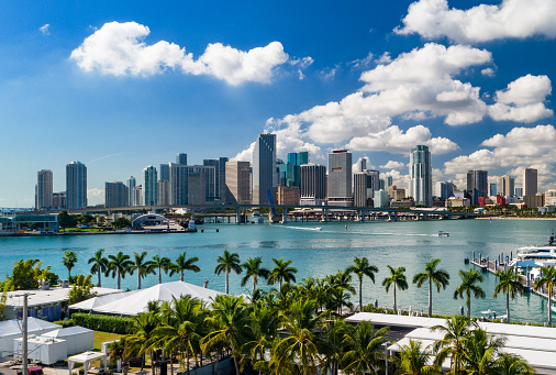 A low level elevated view of the Downtown Miami skyline with palm trees and Biscayne Bay in the foreground.
